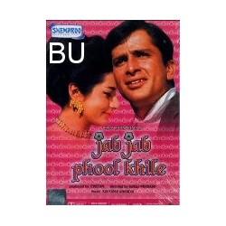 Jab Jab Phool Khilen - DVD