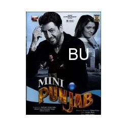 Mini Punjab - DVD