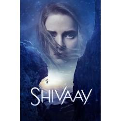 Shivaay DVD